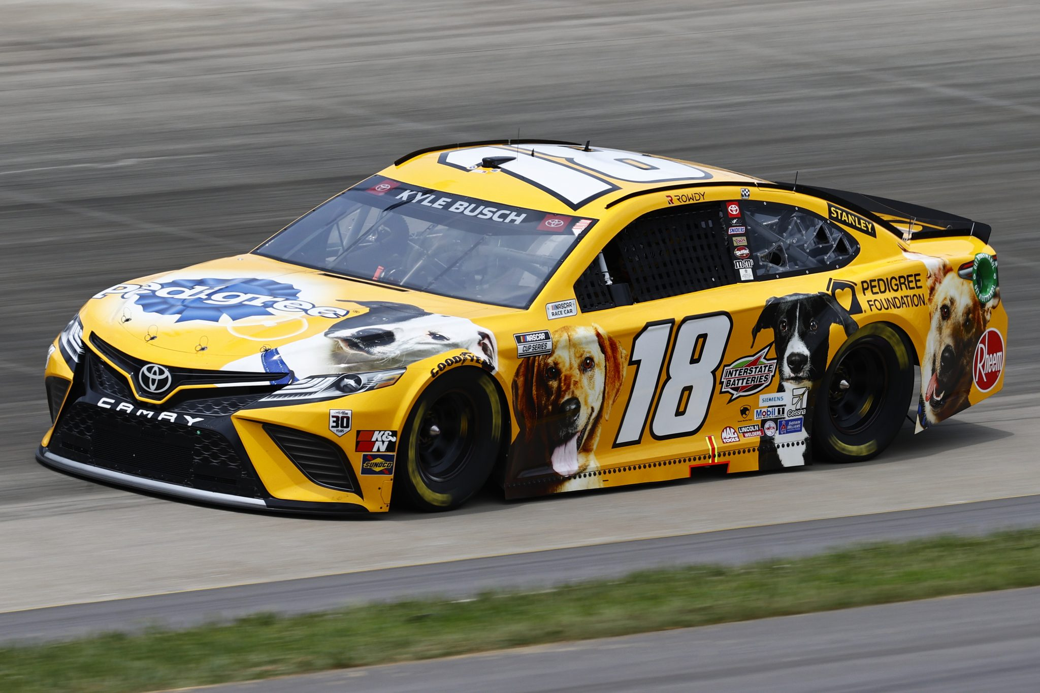 LEBANON, TENNESSEE - JUNE 19: Kyle Busch, driver of the #18 Pedigree Toyota, drives during practice for the NASCAR Cup Series Ally 400 at Nashville Superspeedway on June 19, 2021 in Lebanon, Tennessee. (Photo by Jared C. Tilton/Getty Images) | Getty Images
